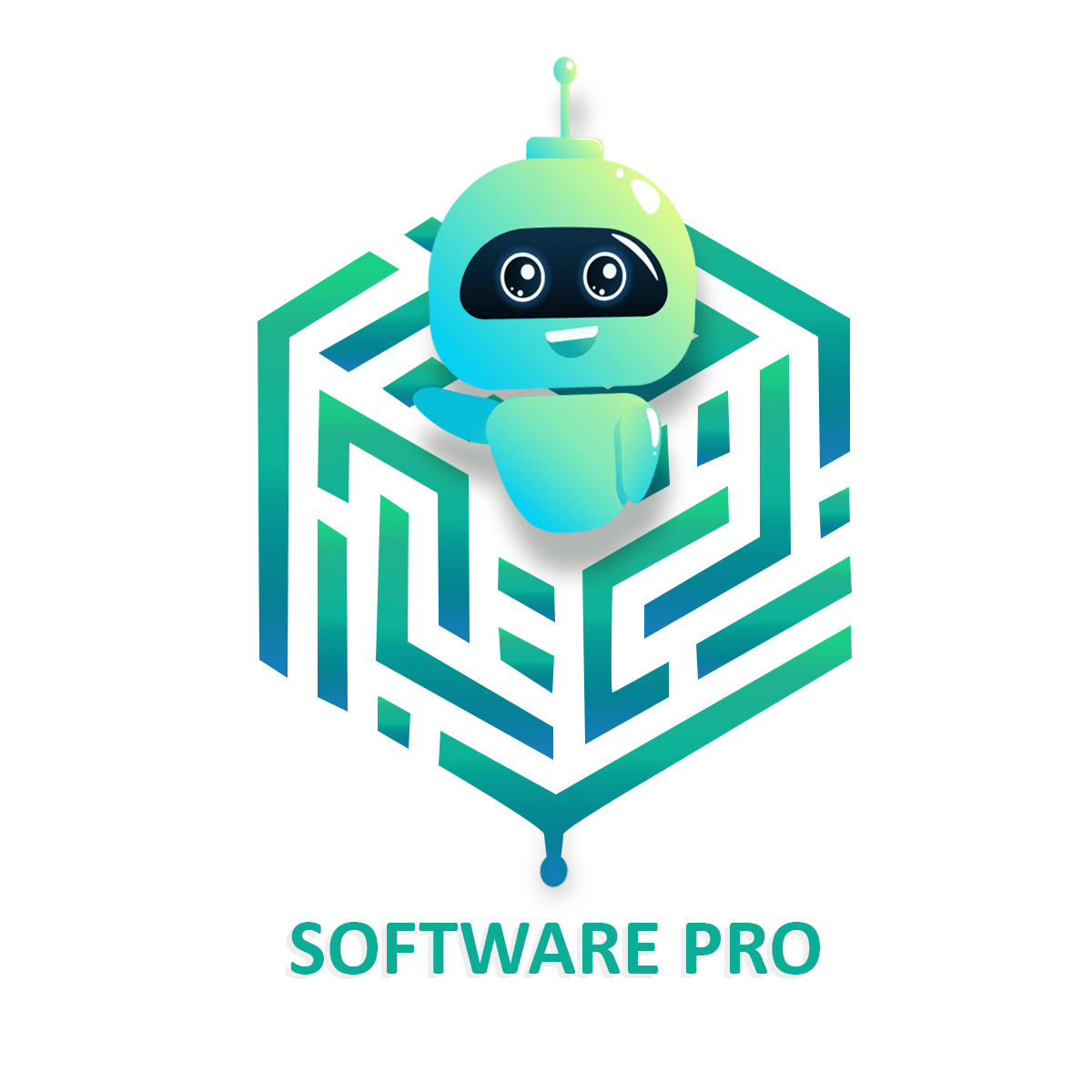 software developers pro
